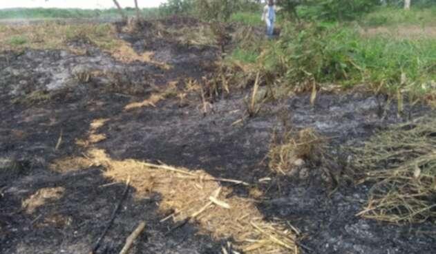 El incendio inició el pasado sábado.
