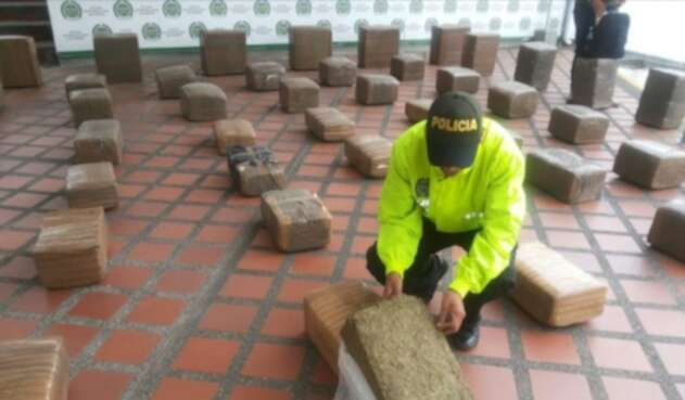 Policía incauto 500 kilos de marihuana.