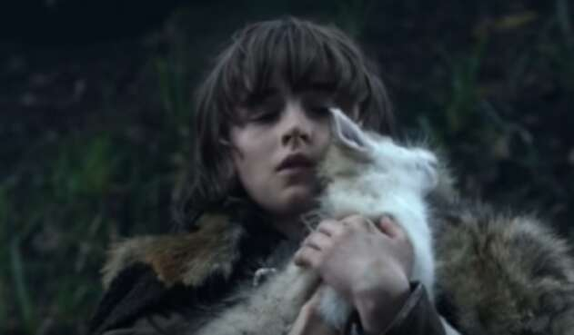 Lobo huargo bebé de Bran Stark (Game of Thrones)