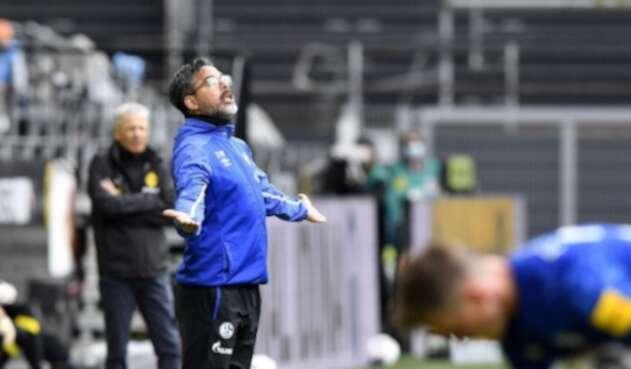 Schalke 04 - 2020