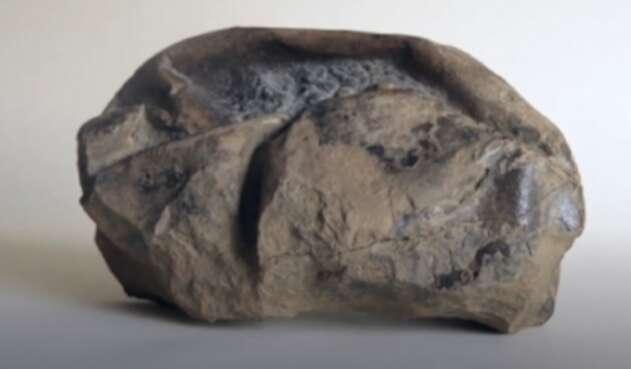Misterioso fósil hallado en la Antártida es un gigante huevo prehistórico