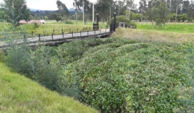 Río Ubaté, municipio de Fúquene