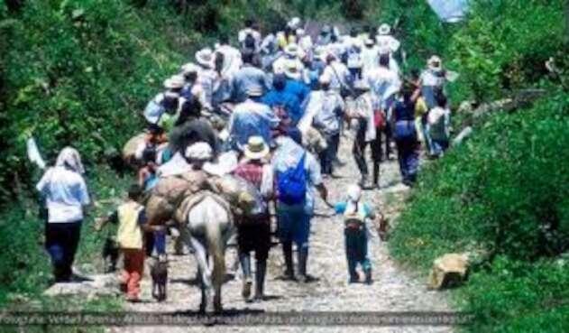Desplazamiento de familias campesinas en Norte de Santander