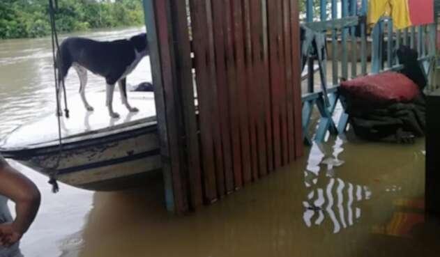 El agua ingresó a las viviendas ocasionando graves daños.