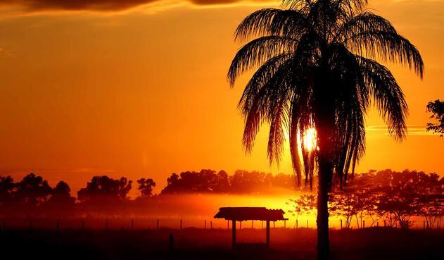 Llano de Colombia - Meta - Amanecer