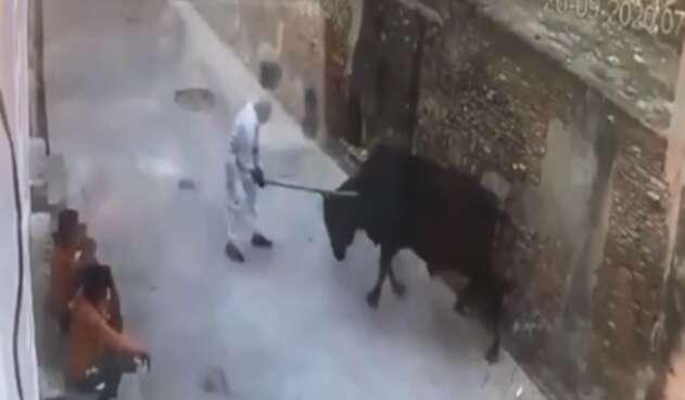 El brutal ataque de un toro a un hombre que le había pegado con un palo