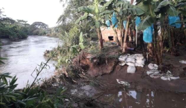 Dentro de los afectados se encuentra plantaciones de banano