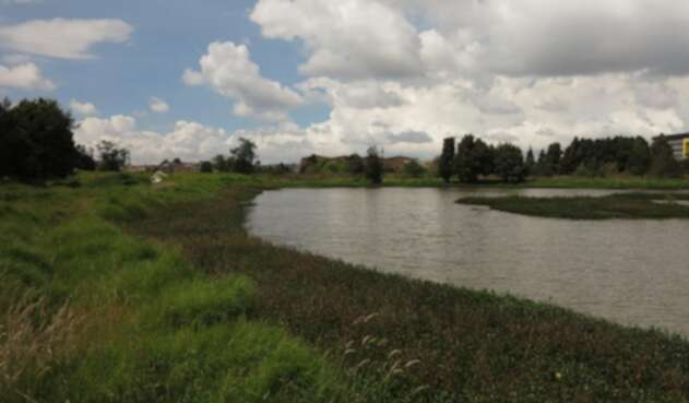 Humedal Tibanica en Bogotá