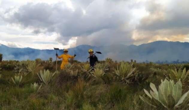 Las llamas consumieron 80 hectareas