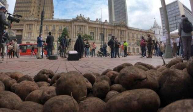 Sobreoferta de papa en Colombia: protesta de paperos en Ministerio de Agricultura