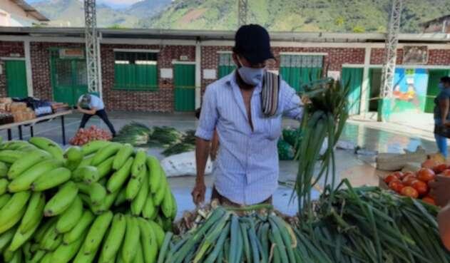 Mercados campesinos en Rioblanco