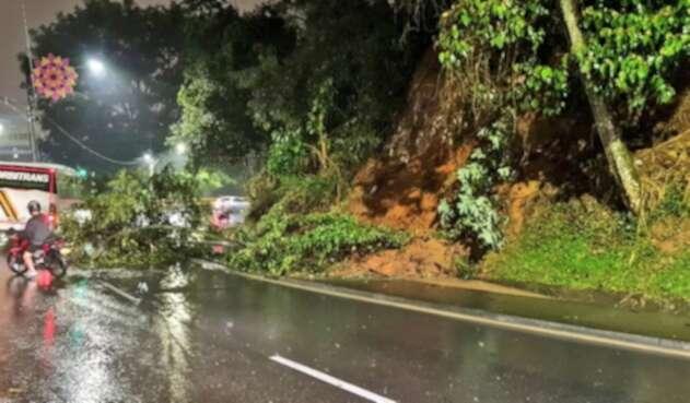 Caída de ramas en Las Palmas en Medellín.