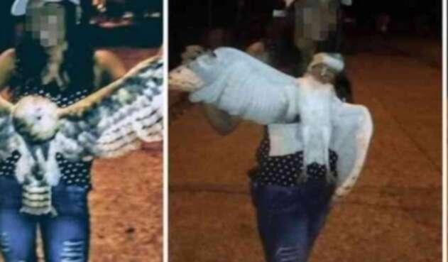 Asesinan a mujer que decapitó a una lechuza en Sucre