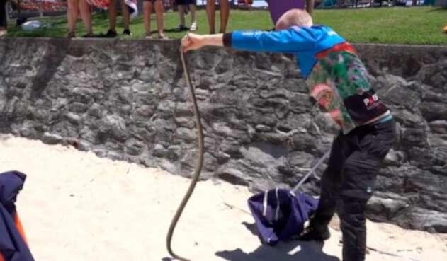 Serpiente hallada cerca de parque infantil