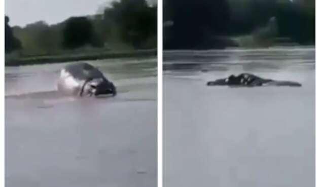 Hipopótamo en el río Magdalena