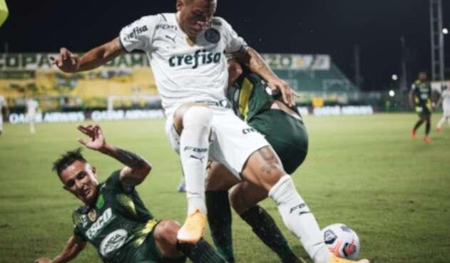Defensa y Justicia Vs. Palmeiras - Recopa Sudamericana