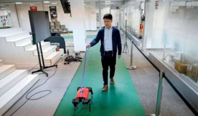 Perros-robot, el último grito tecnológico en China