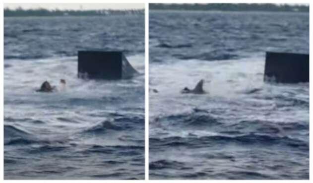 Sean McInerney es atacado por tiburón
