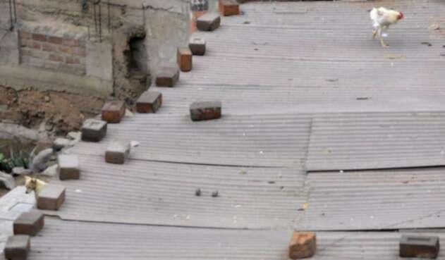 Asbesto-LAFM-AFP.jpg