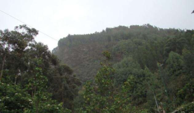 Cerros-orientales-Colprensa.jpg