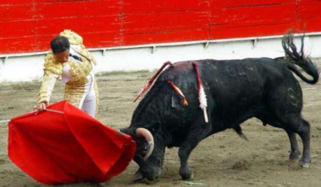 Corridas-de-toros-Colprensa.jpg