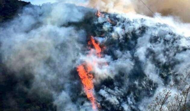 Incendio-forestal-Colprensa.jpg