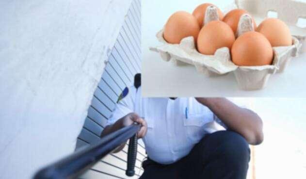 Ingimage-seguridad-huevo.jpg
