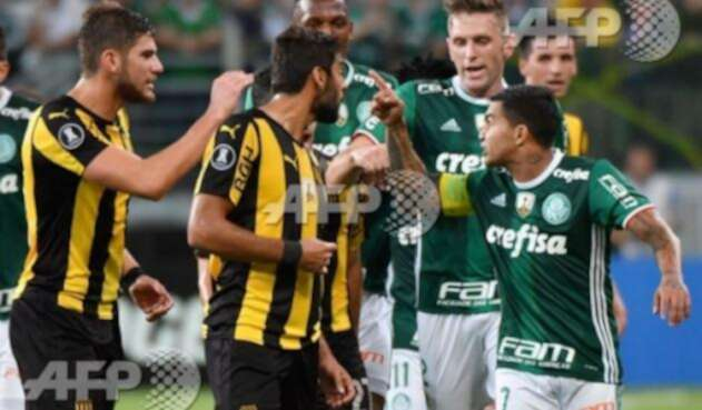 Palmeiras-LA-FM-AFP.jpg