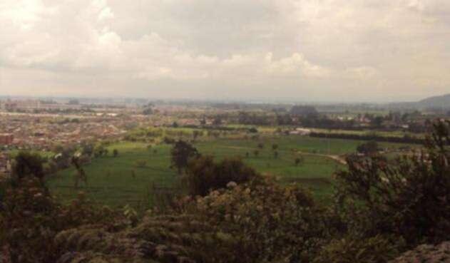 Reserva-Van-der-Hammen-LAFm-humedales-bogota2.jpg