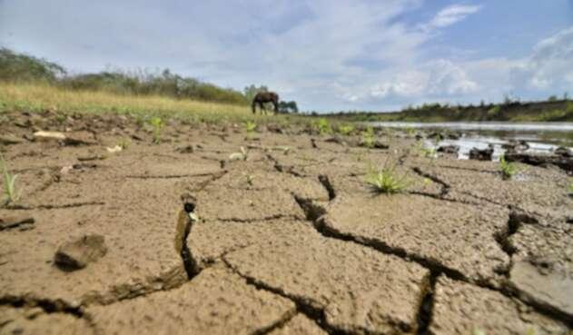Sequía-Colprensa.jpg
