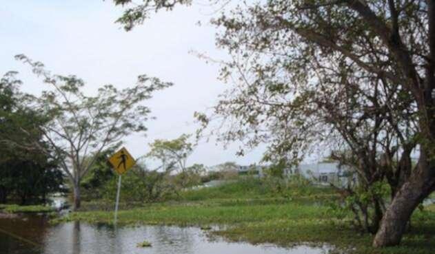 cambio-climatico-y-salud-Universidad-El-Bosque.jpg