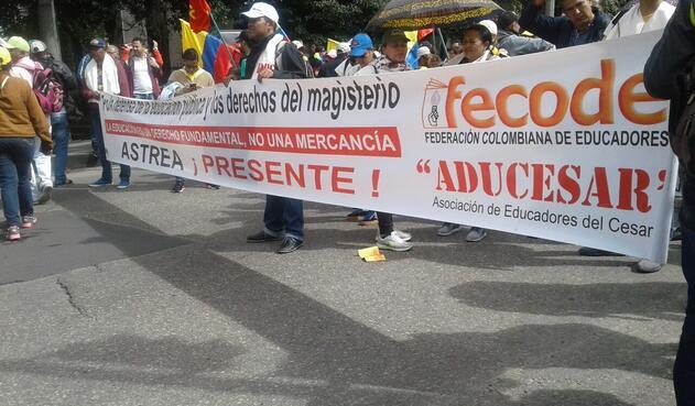 fecodeparo13.jpg