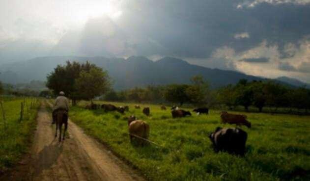 tierrascolombianaslafm-1.jpg