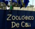 Zoológico de Cali no dejó comer en sus instalaciones a niños en condición de discapacidad