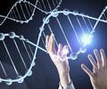 Imagen de referencia sobre genética