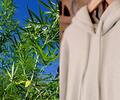 Ropa hecha con cáñamo de cannabis