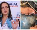 Planearon atentado contra María Fernanda Cabal con cilindros bomba.