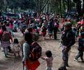 Campamento de indígenas en el Parque Nacional